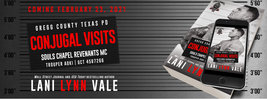Conjugal Visits by Lani Lynn Vale Cover Reveal